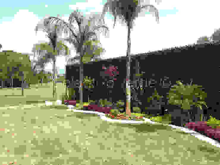 Jardins modernos por Colectivo Verde Moderno