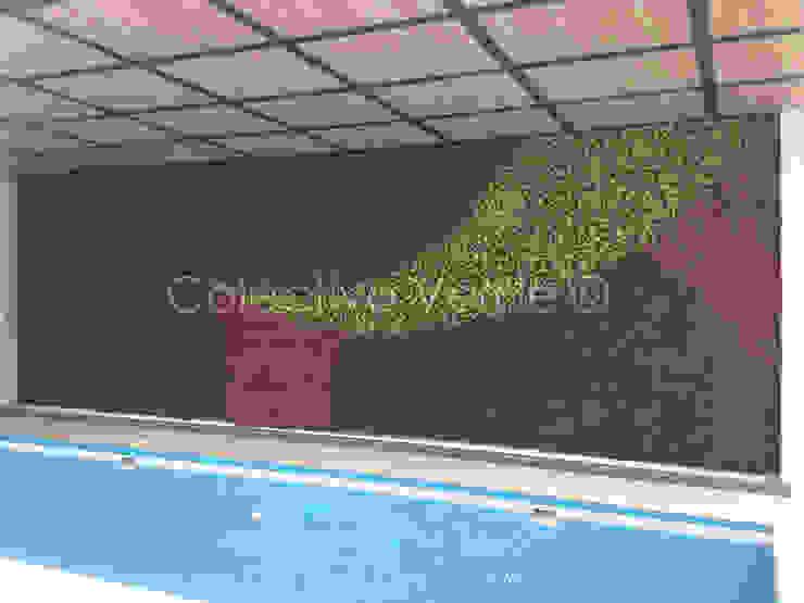 Piletas modernas: Ideas, imágenes y decoración de Colectivo Verde Moderno
