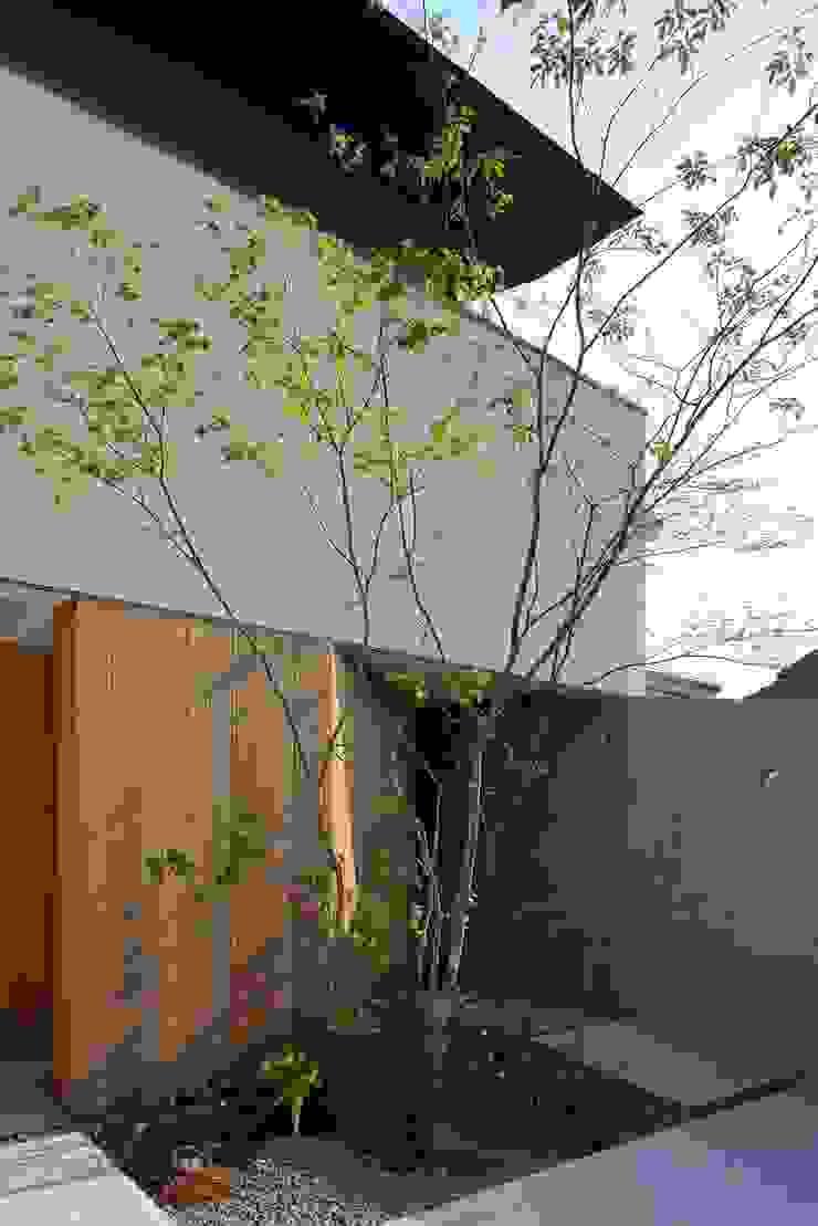 Balcones y terrazas de estilo moderno de 設計組織DNA Moderno