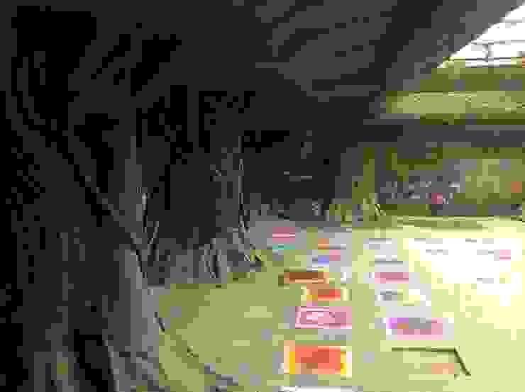 Avatar Theme Restaurant Project - FRP by G Diseno