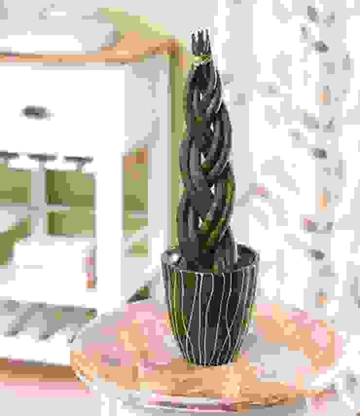Piante verdi in bagno. Bagno in stile classico di Tiziano Codiferro - Master Gardener Classico