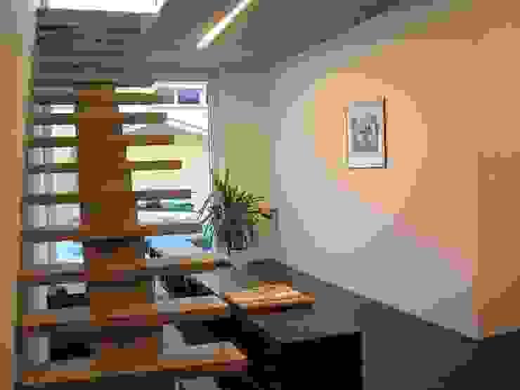 EFH Spescha Zizers Moderner Flur, Diele & Treppenhaus von hogg architektur Modern