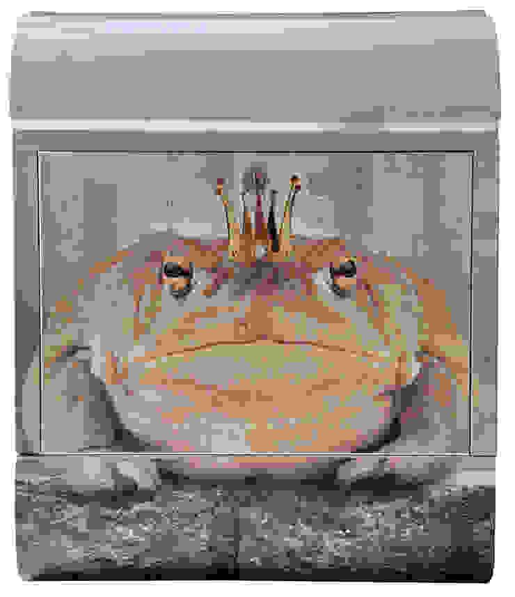 froschkönig von dieBriefkastenfirma.de Ausgefallen
