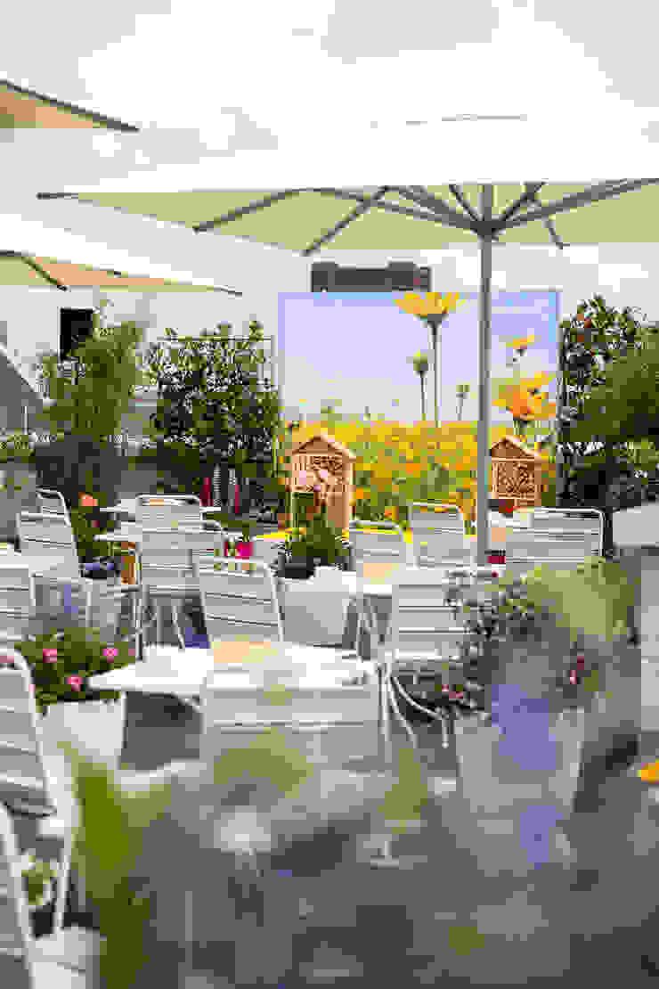 Aanleg Dakterras Bijenkorf Mediterrane kantoor- & winkelruimten van GroenRijk Hoveniers Mediterraan