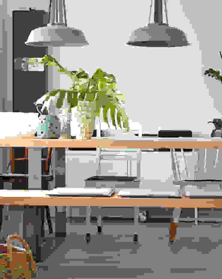 Modern dining room by Kristina Steinmetz Design Modern