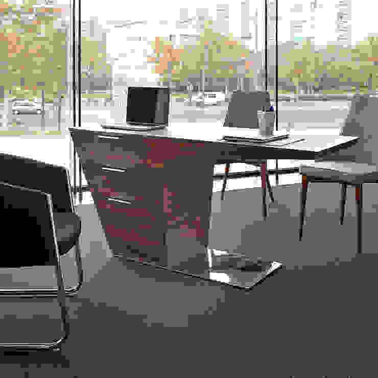 DESPACHOS Y OFICINAS Estudios y despachos de estilo moderno de Muebles Flores Torreblanca Moderno