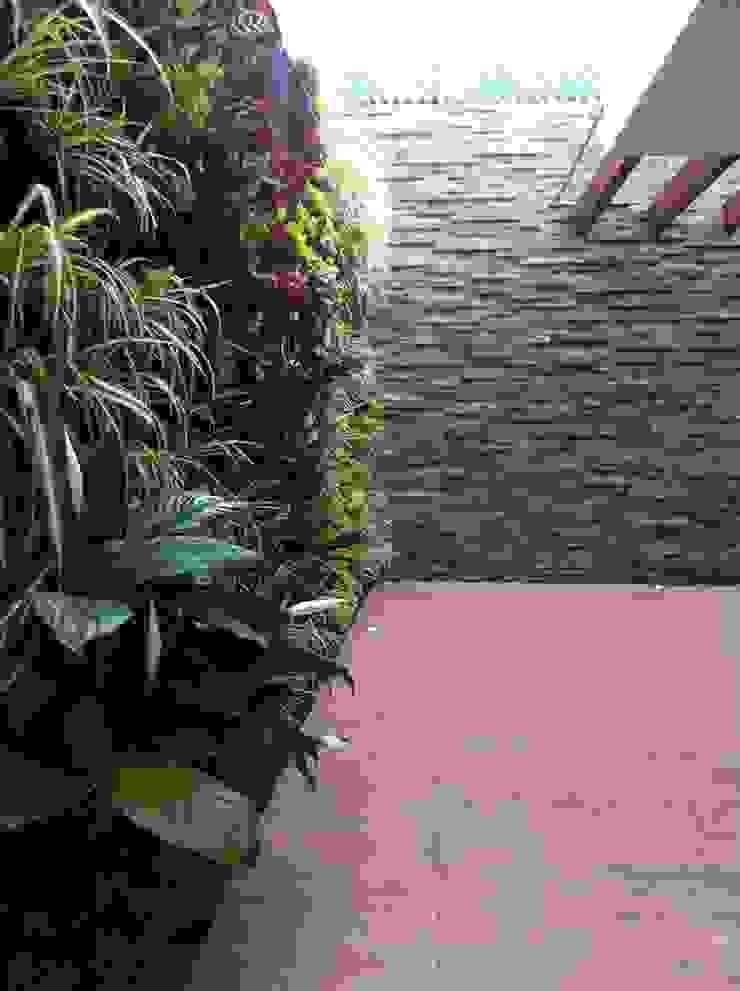 Terraza Balcones y terrazas modernos de MEGA arquitectura Moderno