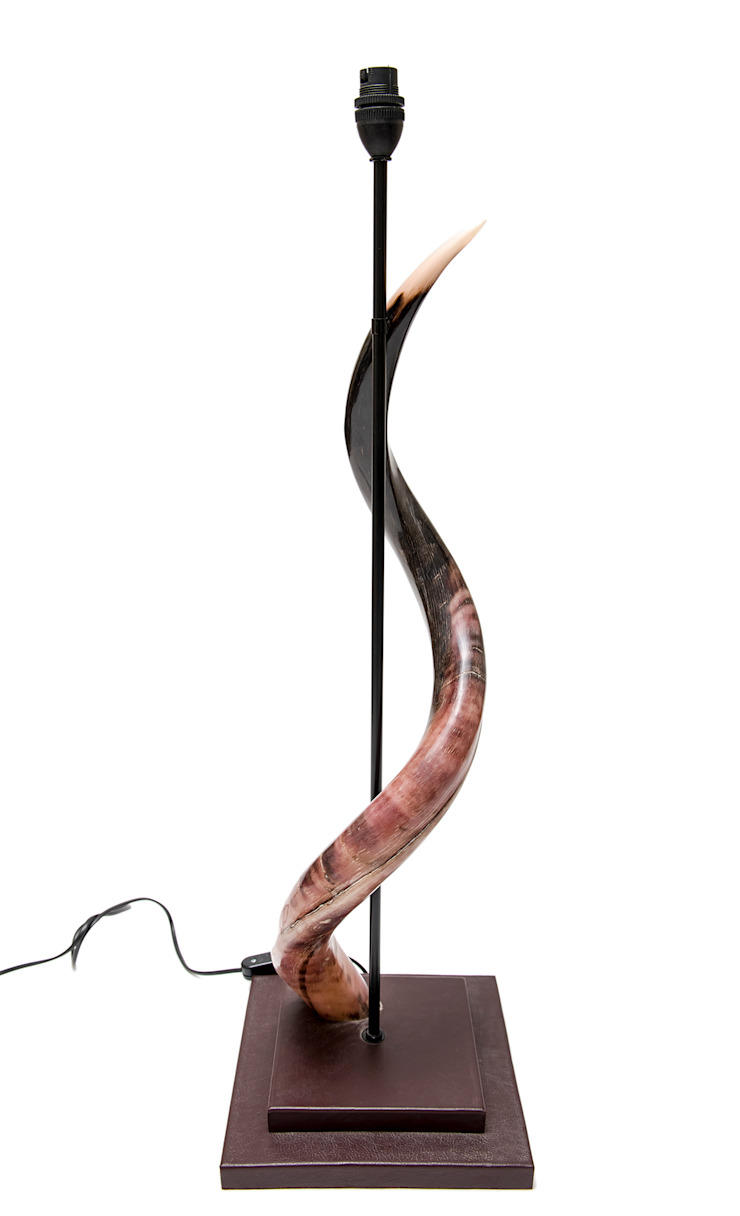 Horn Lamp Stand: modern  by From Africa, Modern