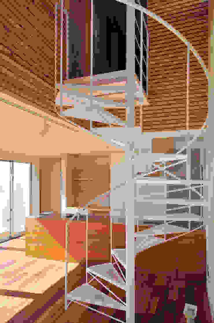 HOUSE-SMT モダンスタイルの 玄関&廊下&階段 の 島田博一建築設計室 モダン