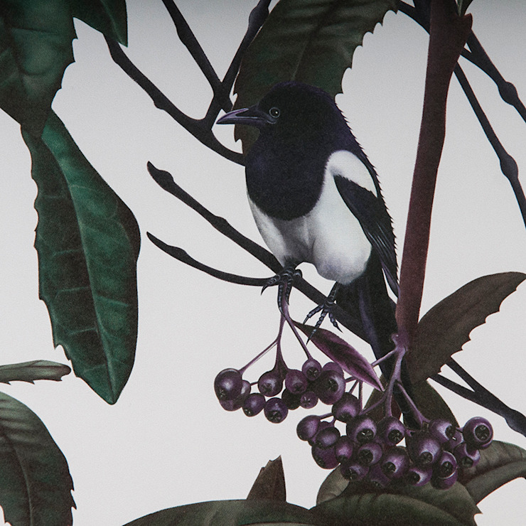 Folia Birds Wallpaper Witch and Watchman Paredes y pisosPapel tapiz