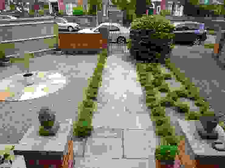 Serene Gravel Garden Jardin moderne par Cornus Garden Design Moderne