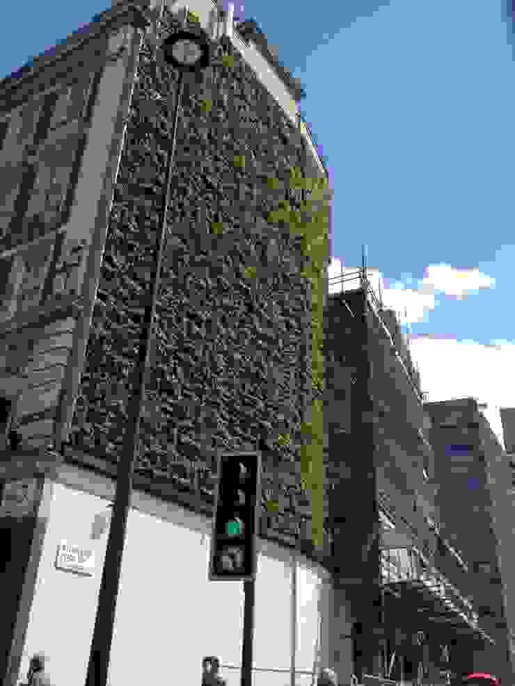 Rubens Hotel Project: modern  by Treebox vertical growers, Modern