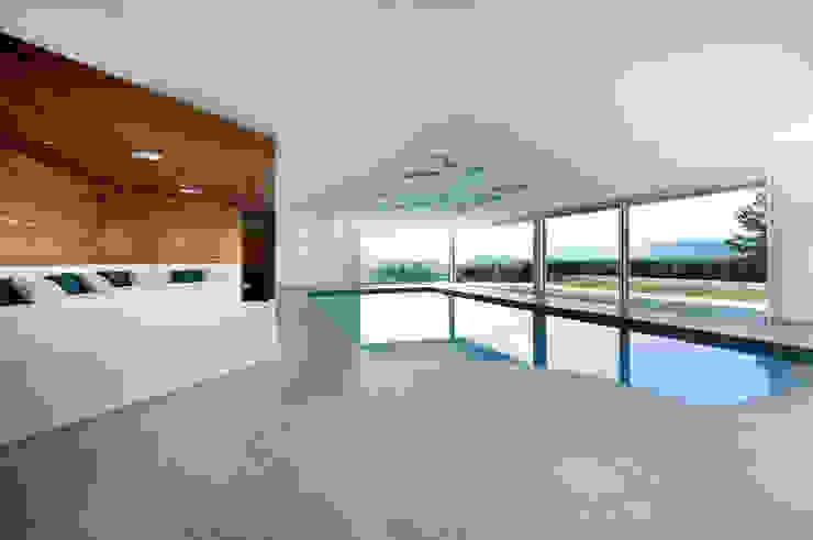 Villa T Modern Pool by DITTEL ARCHITEKTEN GMBH Modern
