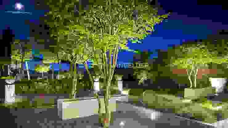 Moderne villatuin Middelburg Moderne tuinen van ERIK VAN GELDER | Devoted to Garden Design Modern
