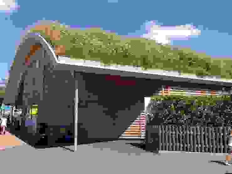 Paulton's Peppa Pig de BBS Green Roofing Escandinavo