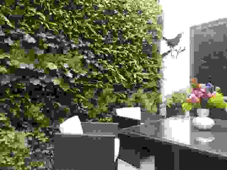 Calvin Street Project: modern  by Treebox vertical growers, Modern