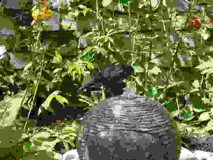 Secret Courtyard Garden Cornus Garden Design