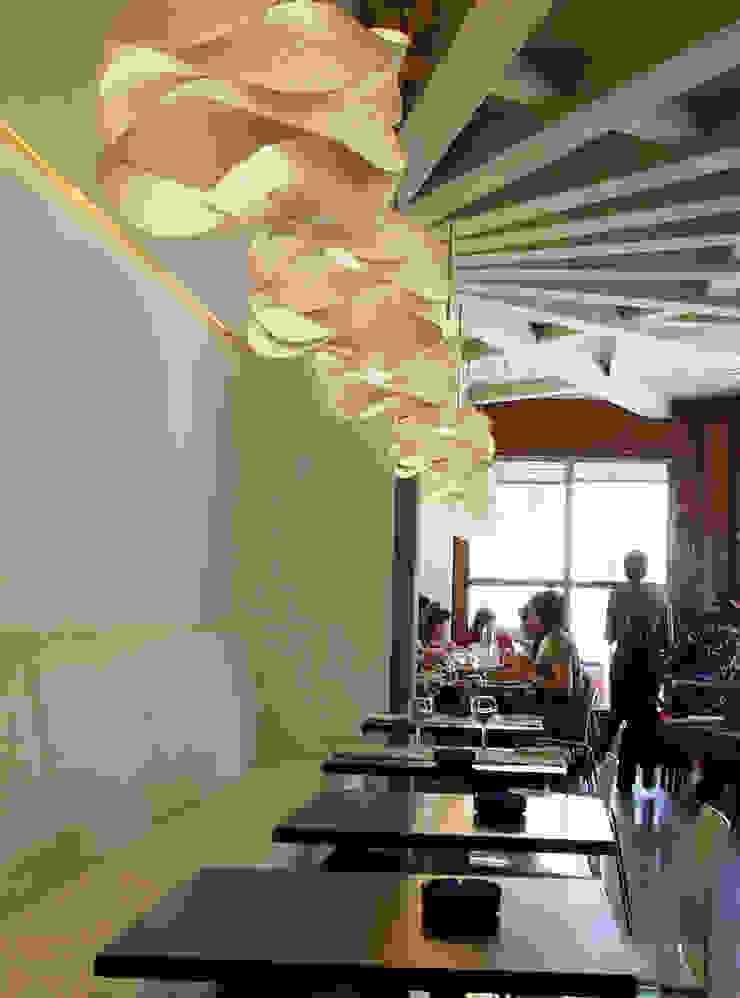 Link de LZF LAMPS