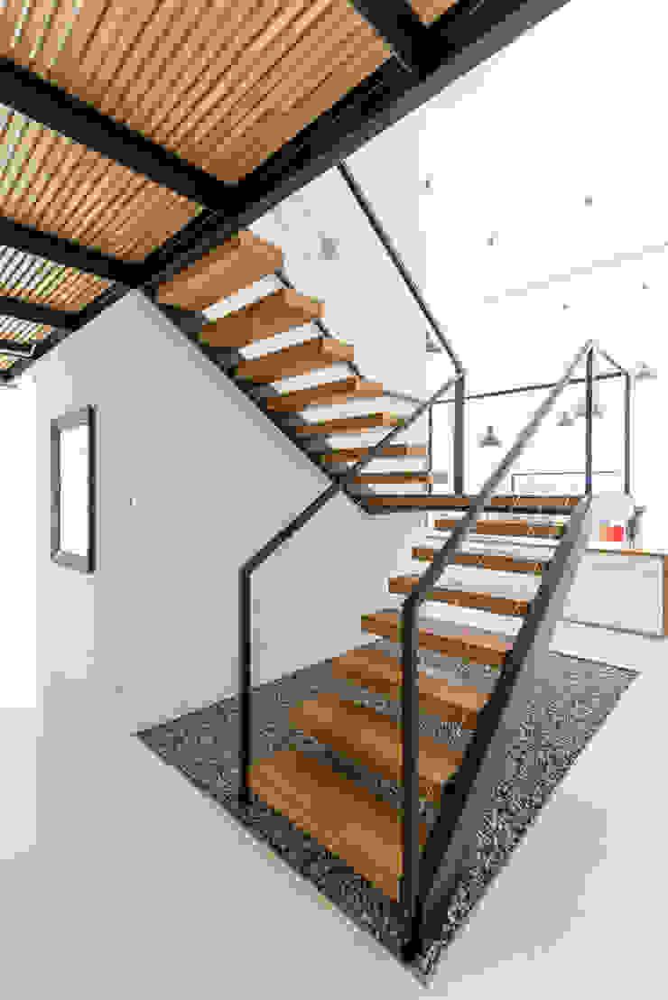 KROPKA STUDIO'S PROJECT Modern corridor, hallway & stairs by Kropka Studio Modern