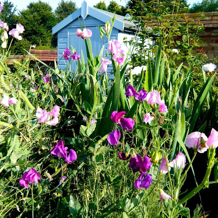 a cutting garden: country  by Joanne Alderson Design, Country