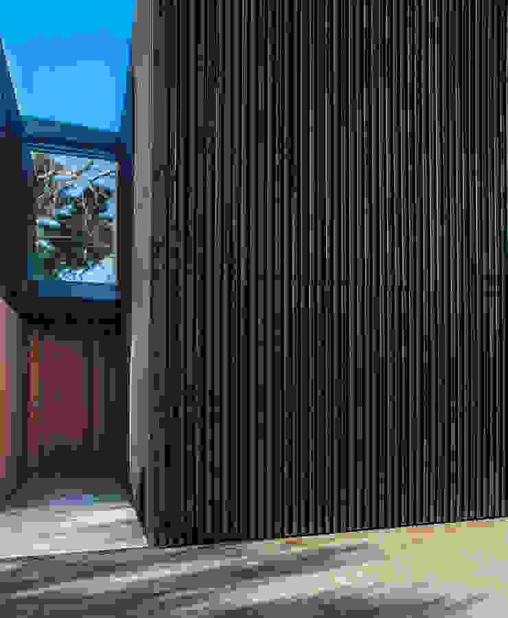 Marine Parade Modern windows & doors by Dorrington Atcheson Architects Modern