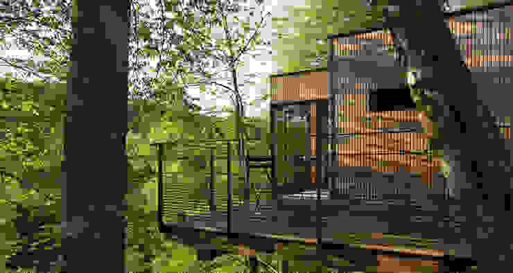 LES CABANES DE SALAGNAC Maisons modernes par AGENCE APOLLINE TERRIER Moderne