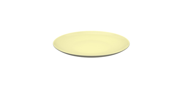 Branksome China Biscuit Plate by Branksome China