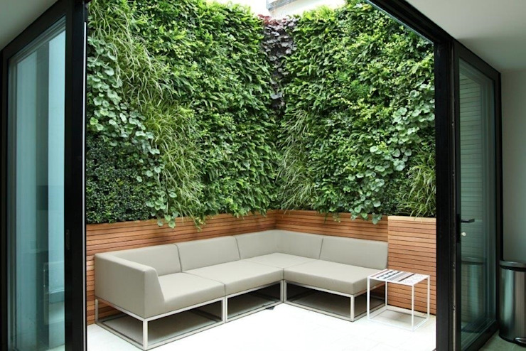 Private Courtyard, London, Living Wall:  Garden  by Biotecture,