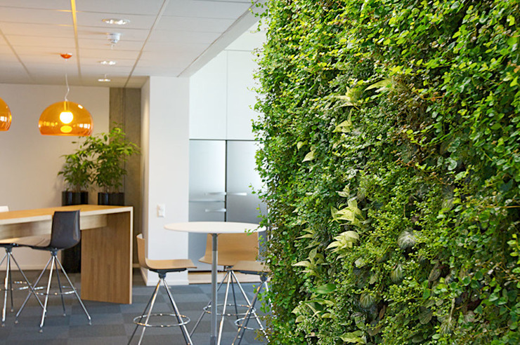 Office Break-out Space, Trondheim, Norway by Biotecture
