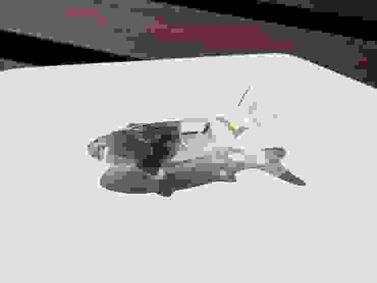 꽃을 담은 물고기 마그넷: Mi Factory의 지중해 ,지중해