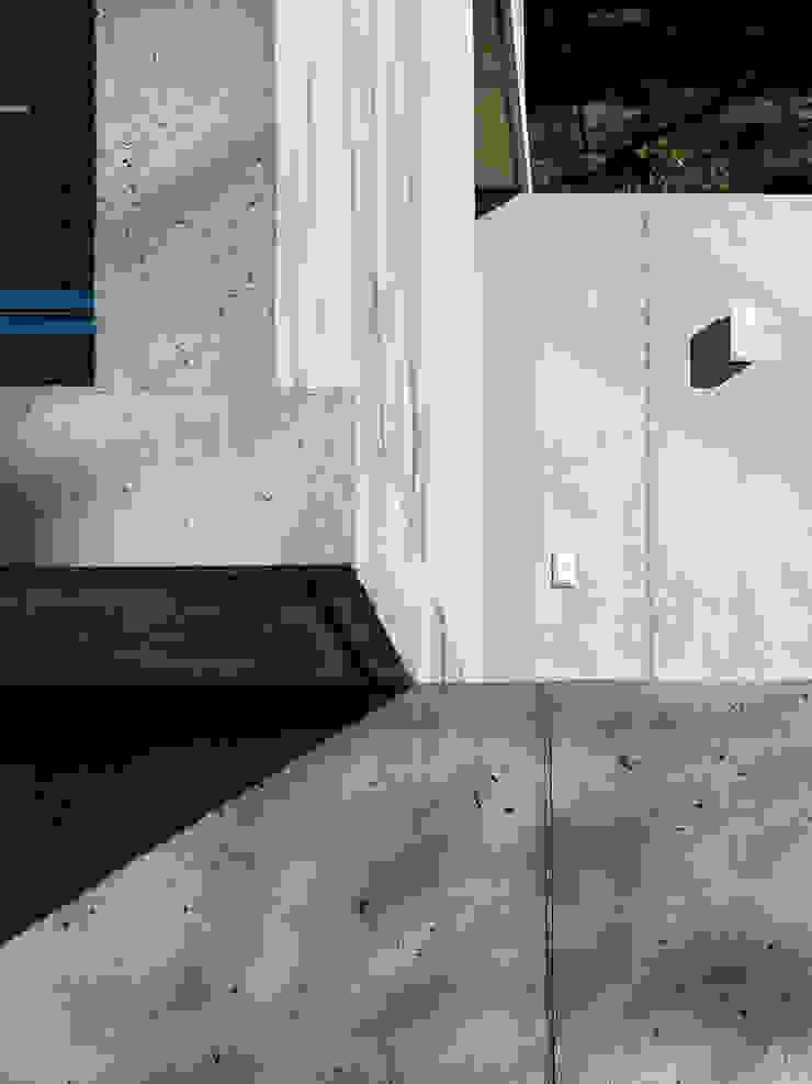 GIAN SALIS ARCHITEKT Стіни