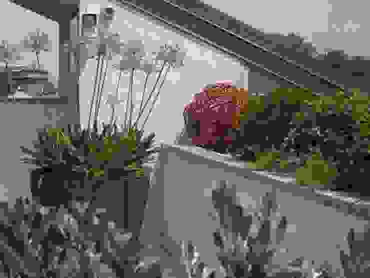 Minimal con brio Balcone, Veranda & Terrazza in stile moderno di Architettura del verde Moderno
