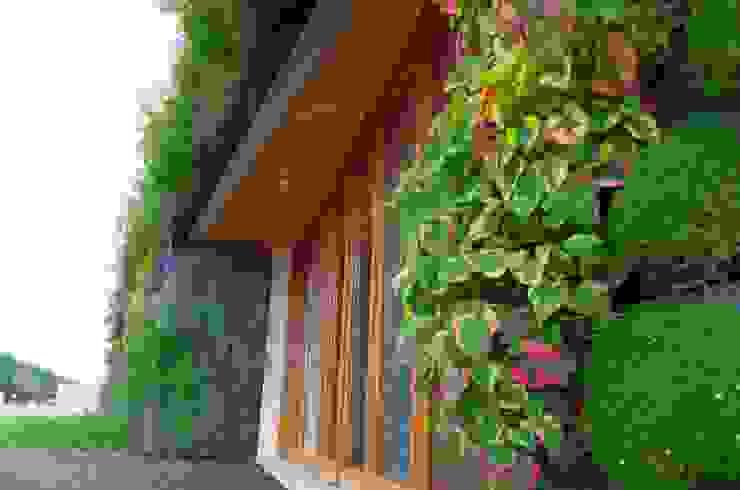 CASAVERDE le mur végétal par contact295 Éclectique