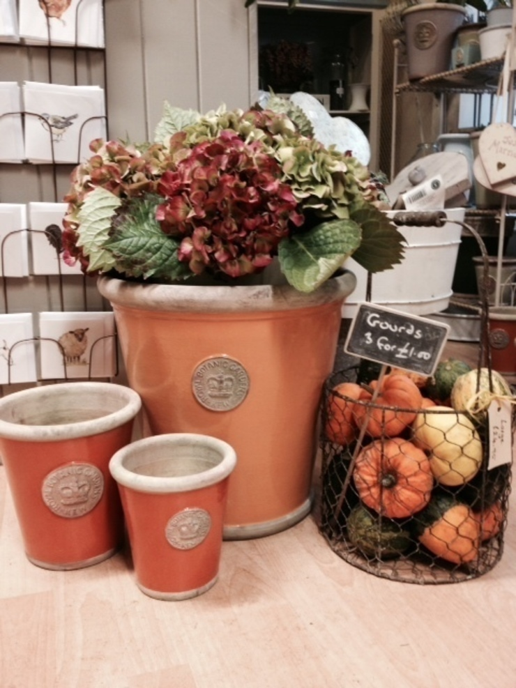 RBG KEW POTS AND PLANTERS: rustic  by Terrace and Garden, Rustic