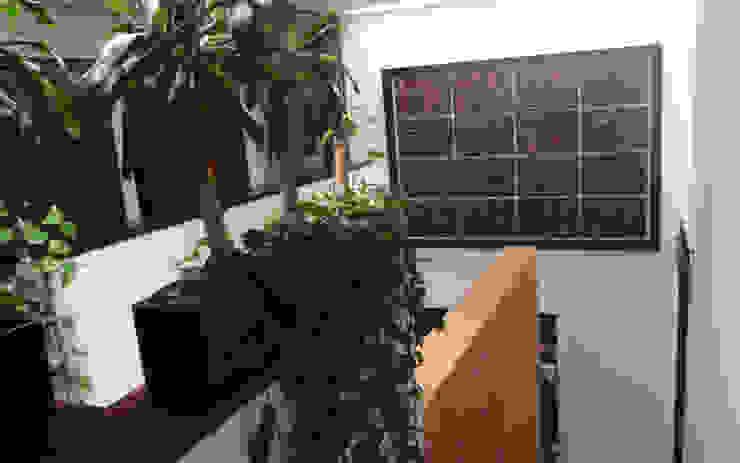 Aplicación Mural Bamboo de Murales Artisticos Decorativos Moderno