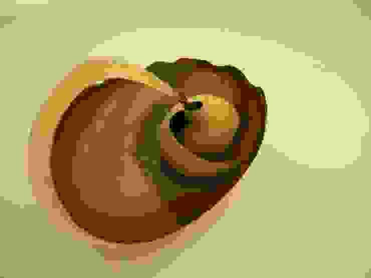 Mollusque by Marc Fish