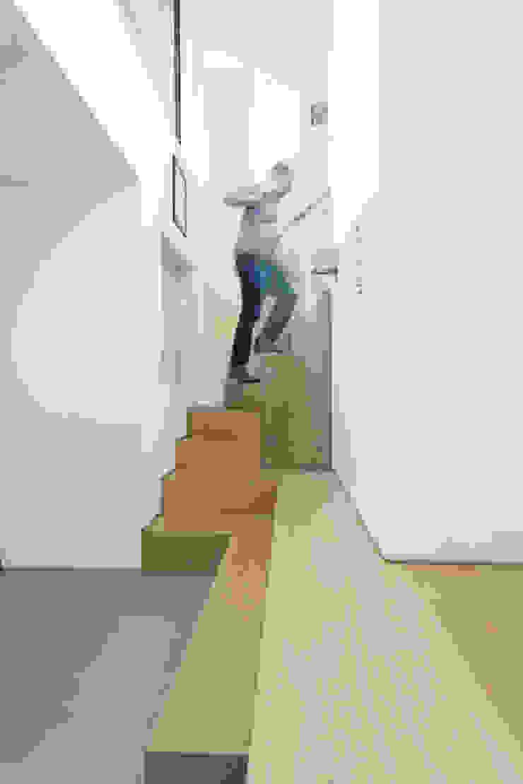 Peekaboo House Modern corridor, hallway & stairs by Lipton Plant Architects Modern