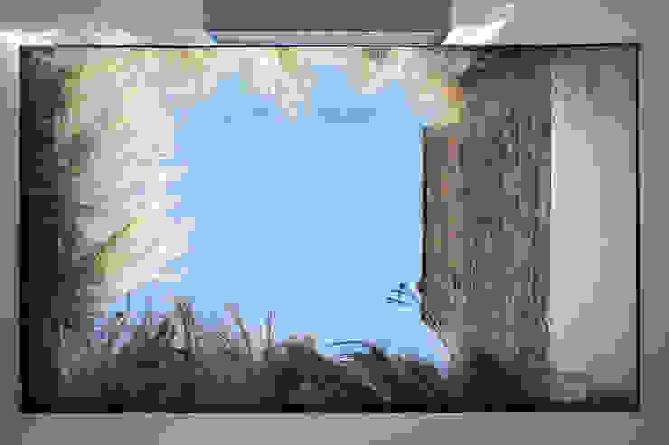 Vincent Terrace Banyo Lipton Plant Architects
