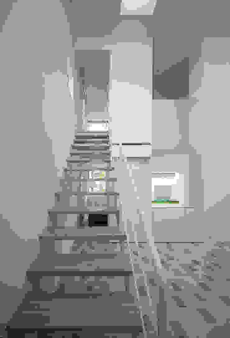 obi house モダンスタイルの 玄関&廊下&階段 の ソルト建築設計事務所 モダン