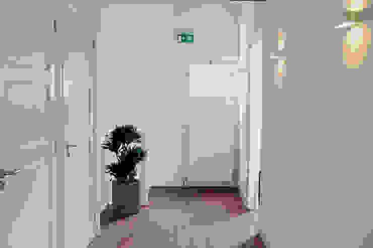 Offices in The Netherlands van Boom in Huis / Baum im Haus / Trees in the Home