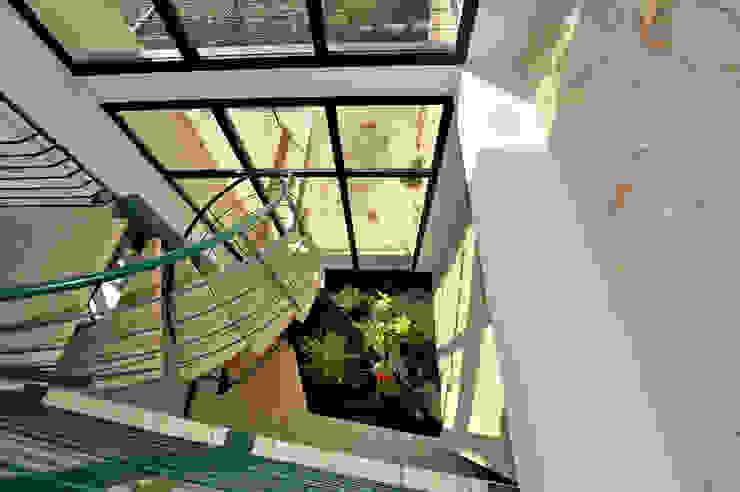EXTENSION D'UNE MAISON Jardin d'hiver moderne par JOSE MARCOS ARCHITECTEUR Moderne