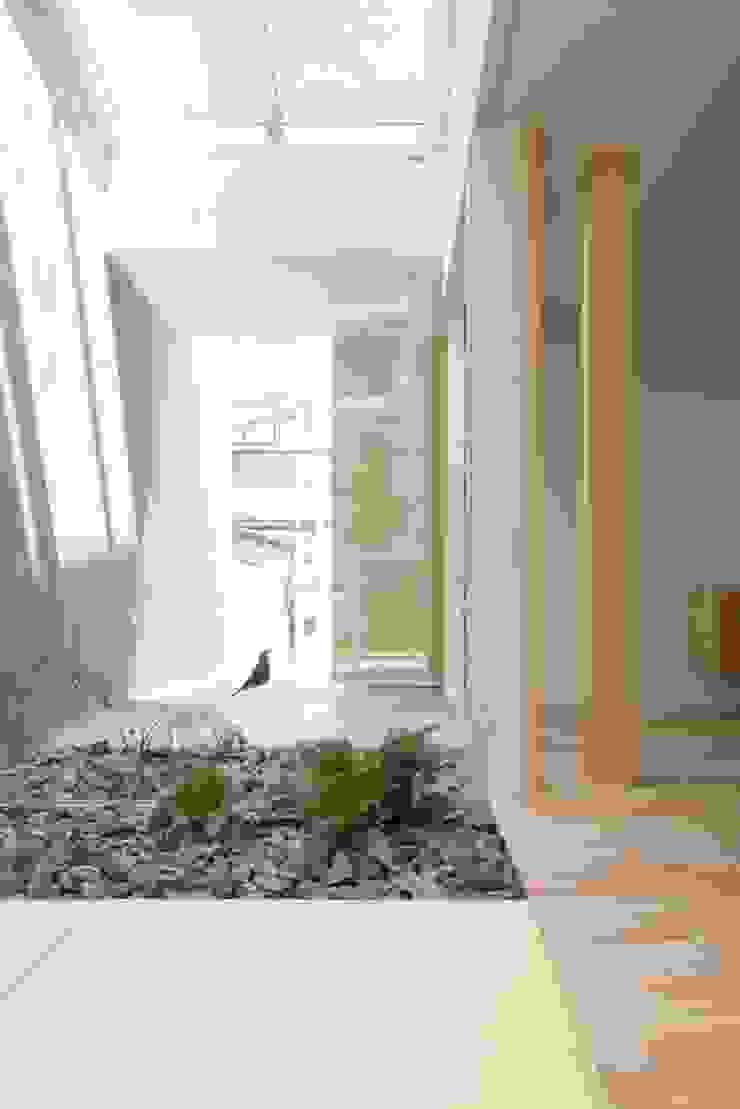 Kusatsu House モダンな庭 の ALTS DESIGN OFFICE モダン