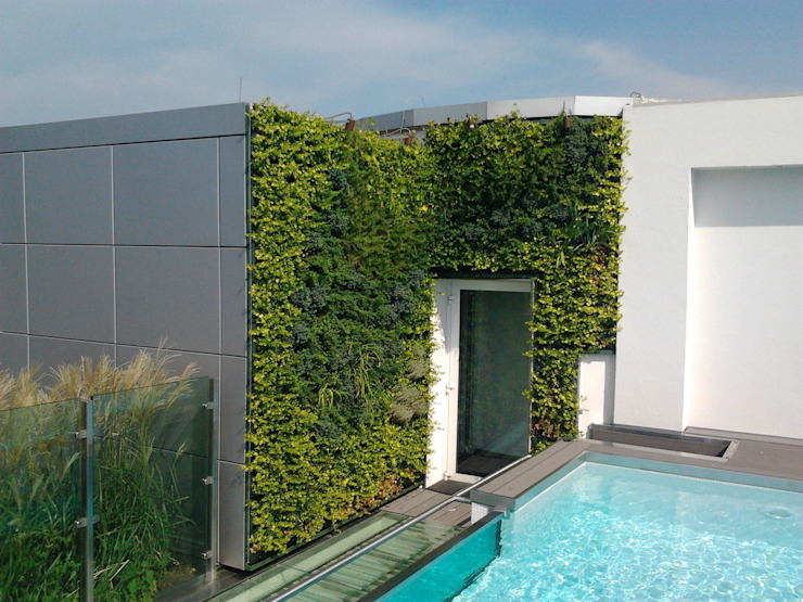 Sundar Italia outdoor vertical garden by homify