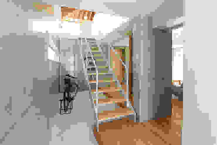 木の下のマテリアル 和風の 玄関&廊下&階段 の Kazuto Nishi Architects 和風