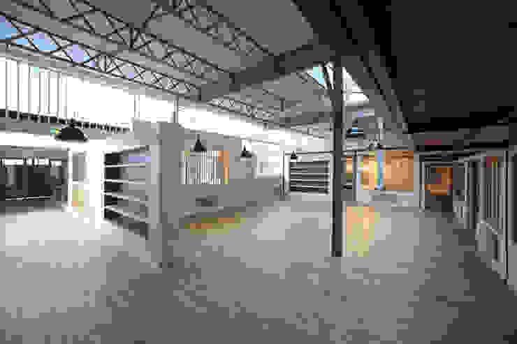 Réhabilitation d'une imprimerie en maison de production par T design architecture