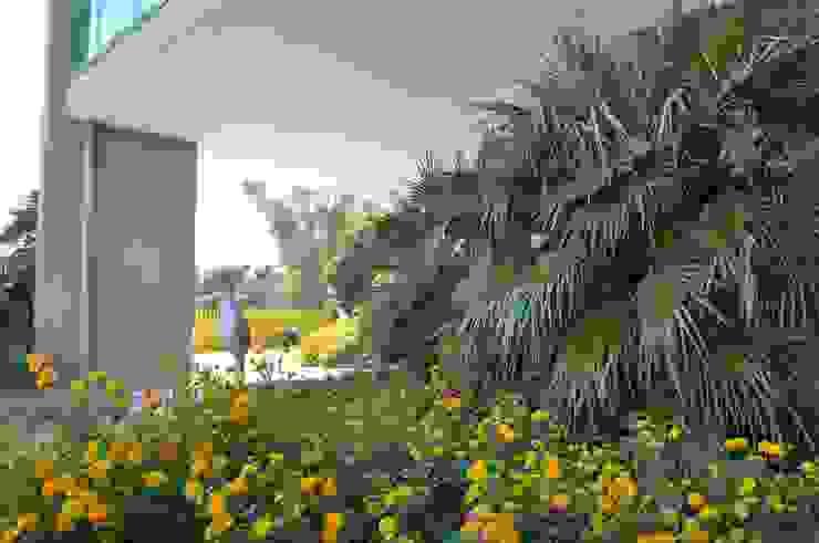 MELLOGIARDINI EXTERIOR DESIGNERS Taman Gaya Mediteran