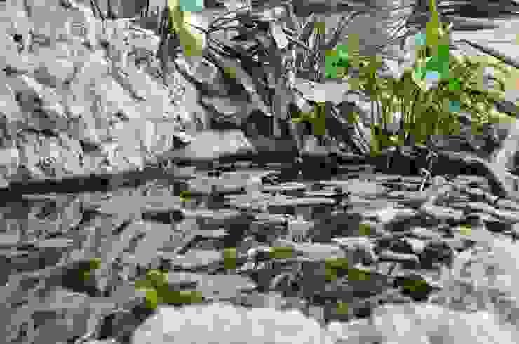 MELLOGIARDINI EXTERIOR DESIGNERS Mediterraner Garten