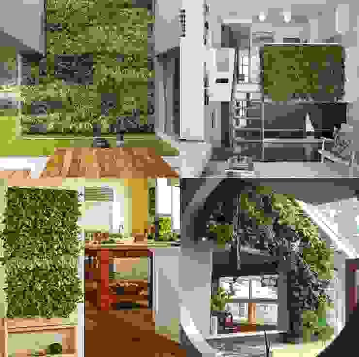 Interior house, vertical garden . Case eclettiche di Dotto Francesco consulting Green Eclettico