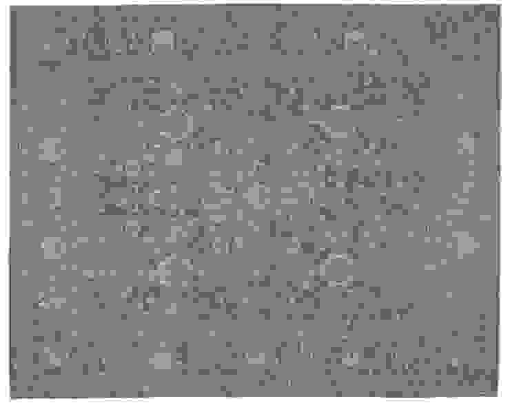 Design #474 van PJ van Aalst exclusieve tapijten BV Rustiek & Brocante