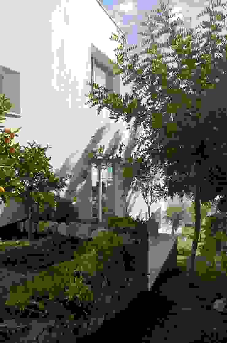 Jardin lateral Jardines de estilo moderno de SH asociados - arquitectura y diseño Moderno
